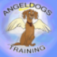 AngelDogs
